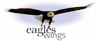 Eagles Wings Graphics 001